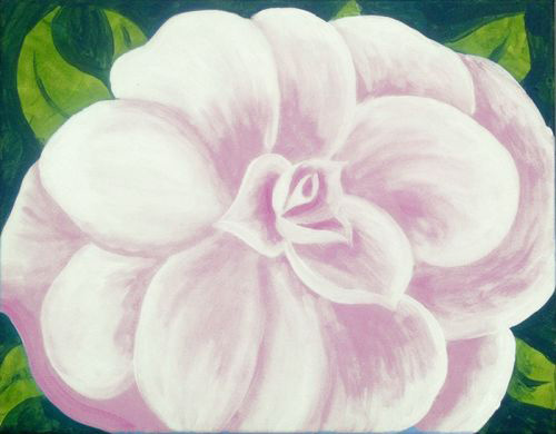 Camellia in pink